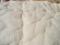 普通の綿に見えても